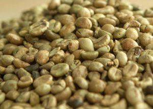 coffee bean exporters